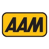 Customer of SQL - The Number 1 Accounting Software: aam