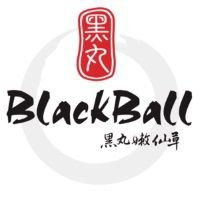 Customer of SQL - The Number 1 Accounting Software: black ball